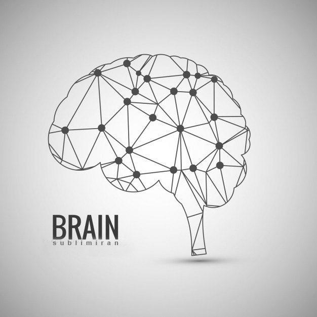 تقویت حافظه بلند مدت