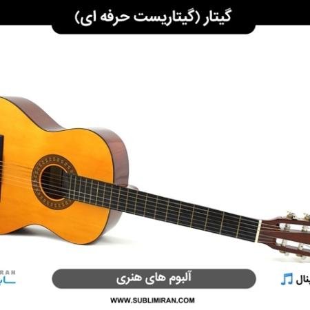 گیتار زدن حرفه ای