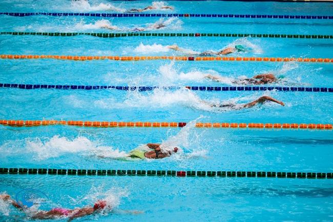 شنای حرفه ای
