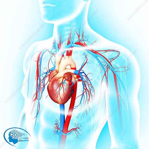 تقویت شعور قلبی